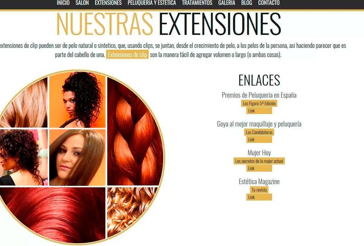 Diseño web peluquerías